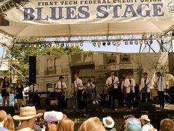 Image for The Backyard Blues Boys