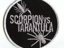Scorpion vs. Tarantula