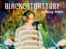 blackcatbattery (Patrick Foster)