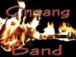 Ginsang Band