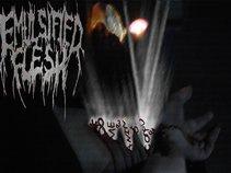 Emulsified Flesh