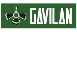 Image for Gavilan