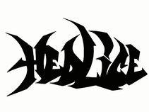 HedLice