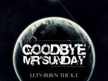Goodbye Mr'sunday