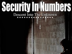 Image for Security In Numbers