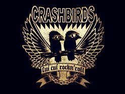 Image for crashbirds
