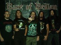 Bane Of Bedlam