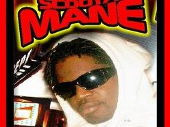 Image for Scoota Mane