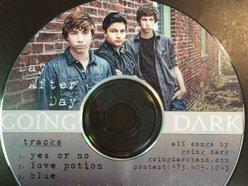 Image for Going Dark