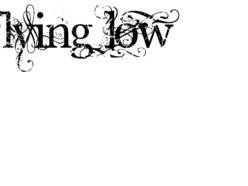 Image for Flying Low