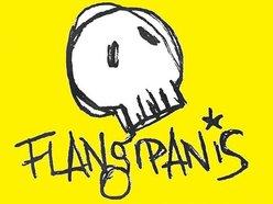 Image for flangipanis