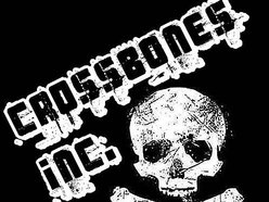 Image for Crossbones Inc