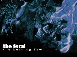 Image for The Feral