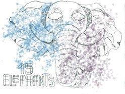 Fifteen Elephants