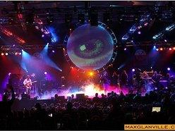 Several Species Pink Floyd Tribute
