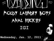 Moldy Laundry Boys