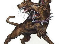 Image for the hell hounds
