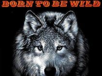 BORN TO BE WILD  - a tribute to STEPPENWOLF