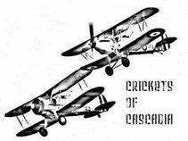 Crickets of Cascadia