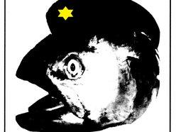 Image for Johnny Habu & The Rebel Salmon