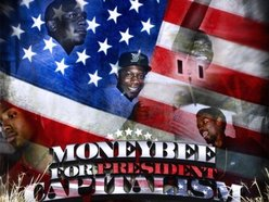 Image for $Bee (MoneyBee)
