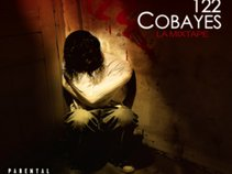 122 Cobayes