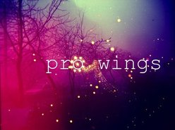 Image for Pro Wings