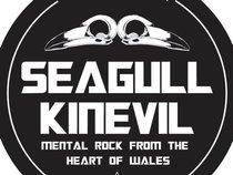 SEAGULL KINEVIL