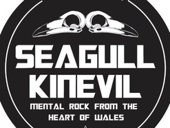 Image for SEAGULL KINEVIL