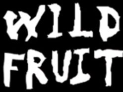 Image for Wild Fruit