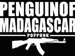 Image for PENGUIN OF MADAGASCAR
