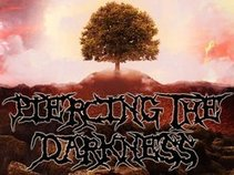 Piercing the Darkness (Metal Band)