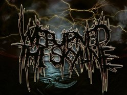Image for We Burned the Skyline
