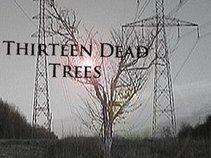 Thirteen Dead Trees
