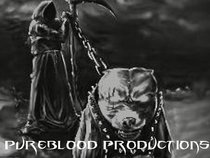 PUREBLOOD PRODUCTIONS