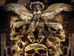 Image for Animus Divine