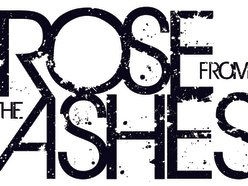 Image for Rose From The Ashes