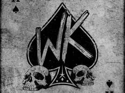 Image for WILD KITTEN