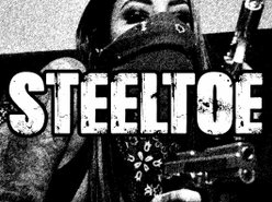 Image for Steeltoe