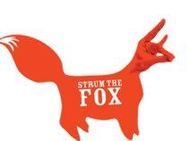 Strum the Fox