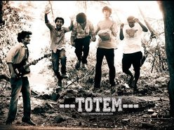 Image for Totem