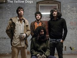Image for The Yellow Dogs
