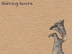 Image for The Thieving Hours