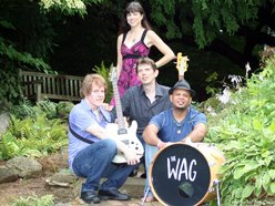 Image for The Wag