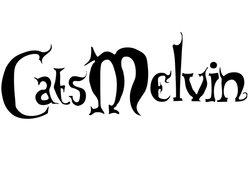 Image for CATSMELVIN