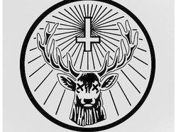 Image for Dead Deer
