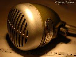Image for Musicaria Brasil