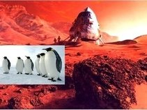 Penguins from Mars