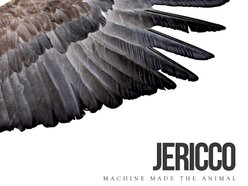 Image for JERICCO