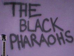 Image for The Black Pharaohs